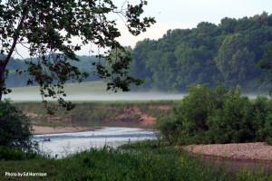 riverfog.jpg